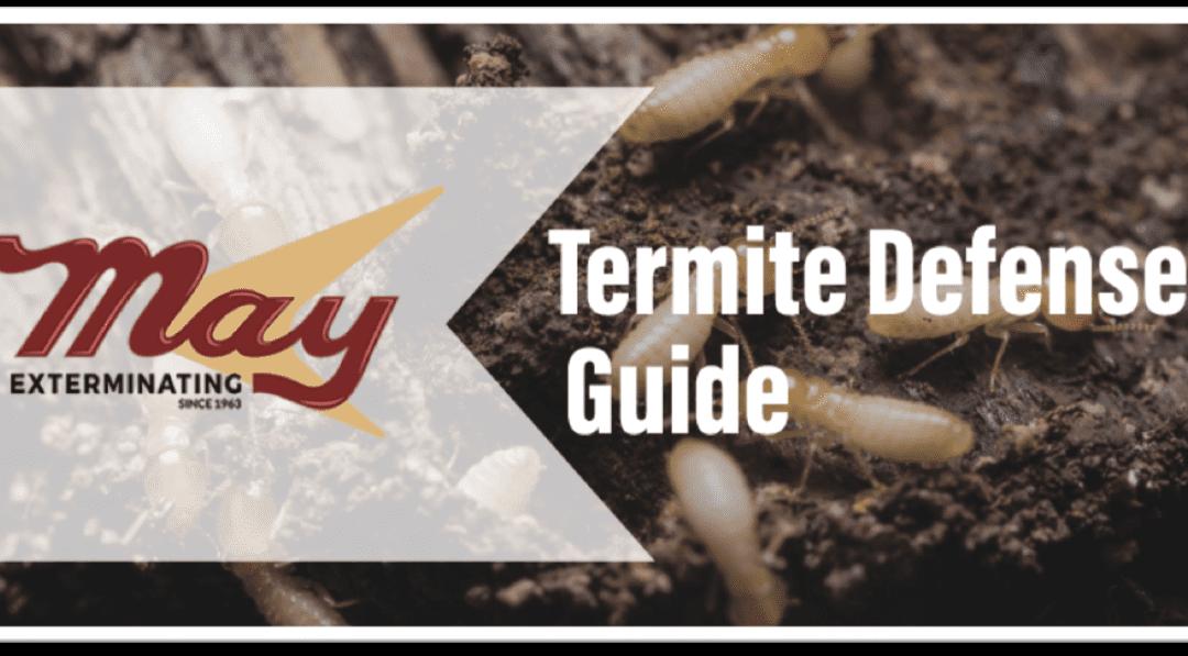Termite Defense Guide