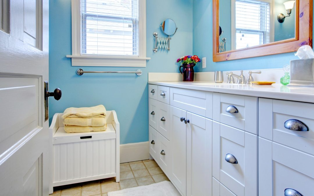 How to Organize Your Under-sink Cabinets to Keep Pests Out