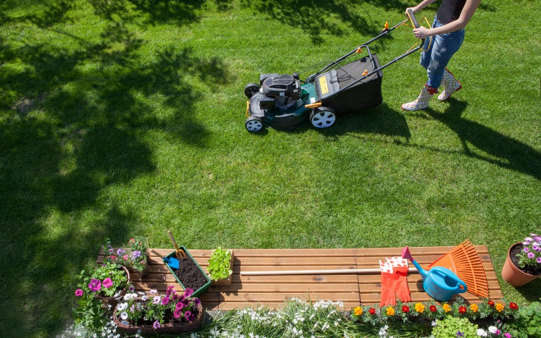 21 Pest Control Tips to Keep Pests Away This Summer