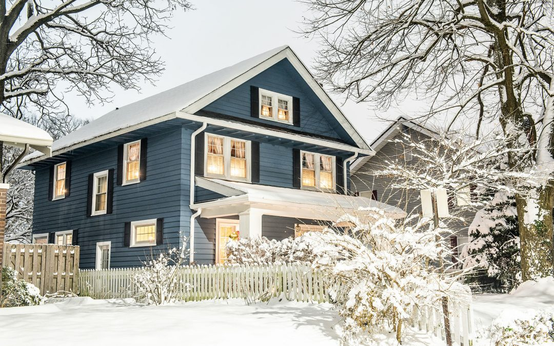 Is Pest Control Needed in Winter?